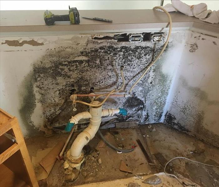 Kitchen Mold Remediation  Before