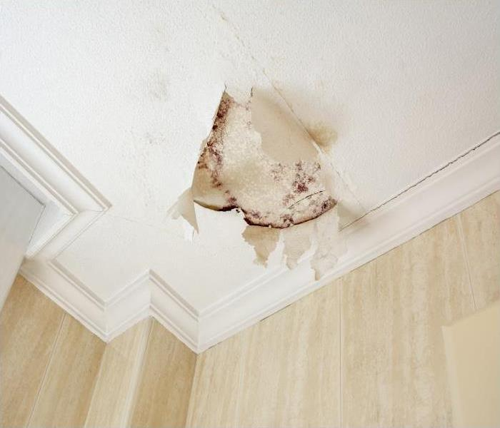 Water Damage Our Crew At SERVPRO Has The Experience And Equipment To Restore Your Water Damaged Orlando Home