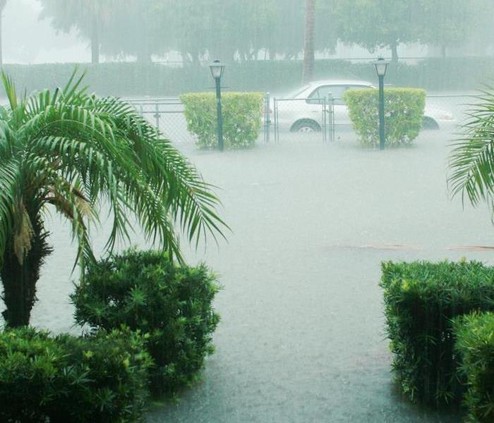 Storm Damage Did the Heavy Rains Cause Flooding in Your Orlando Home?